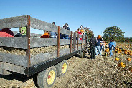 pumpkin patch hayride