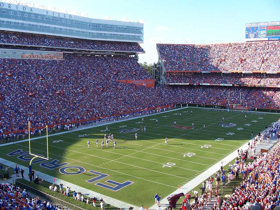 This picture was taken at the South Carolina-Florida game on November 11, 2006 by Randall Stewart.