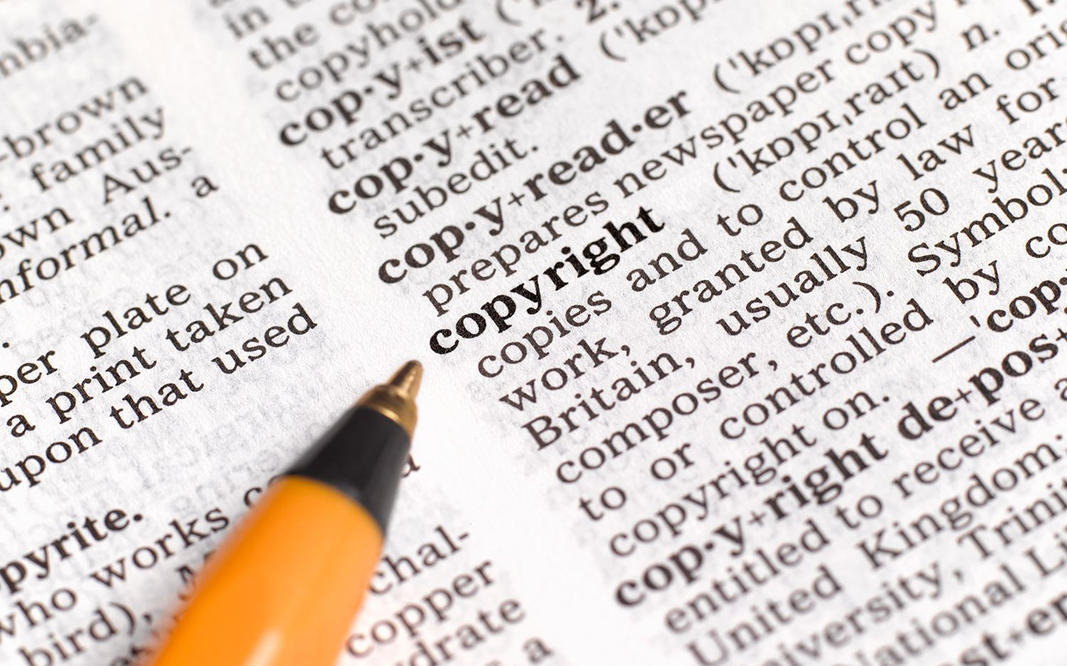 Copyright notice and the use of the copyright symbol what you should know about copyright biocorpaavc