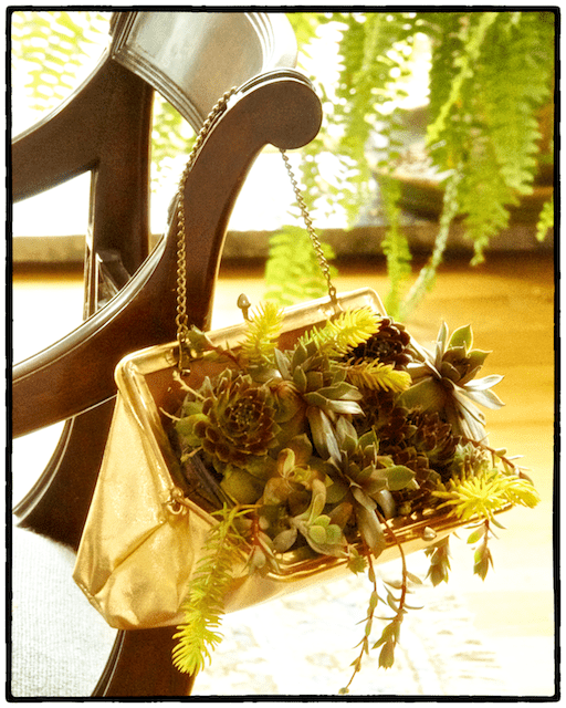 Finished succulent container garden in a purse