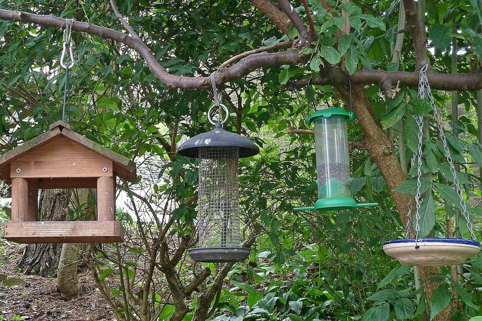 How to hang a bird feeder for Types of birdhouses for birds
