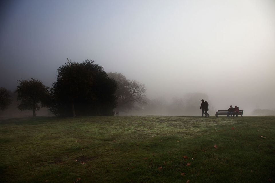 London Fog in Greenwich Park