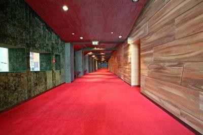 velvet carpet pile