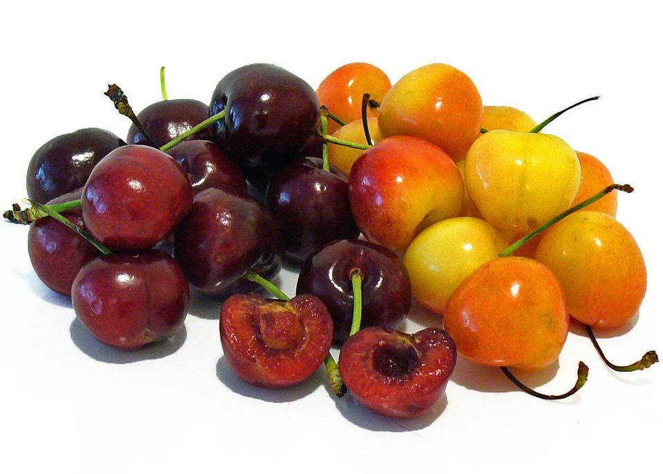 cherries cherry recipes bing rainier fruit receipts