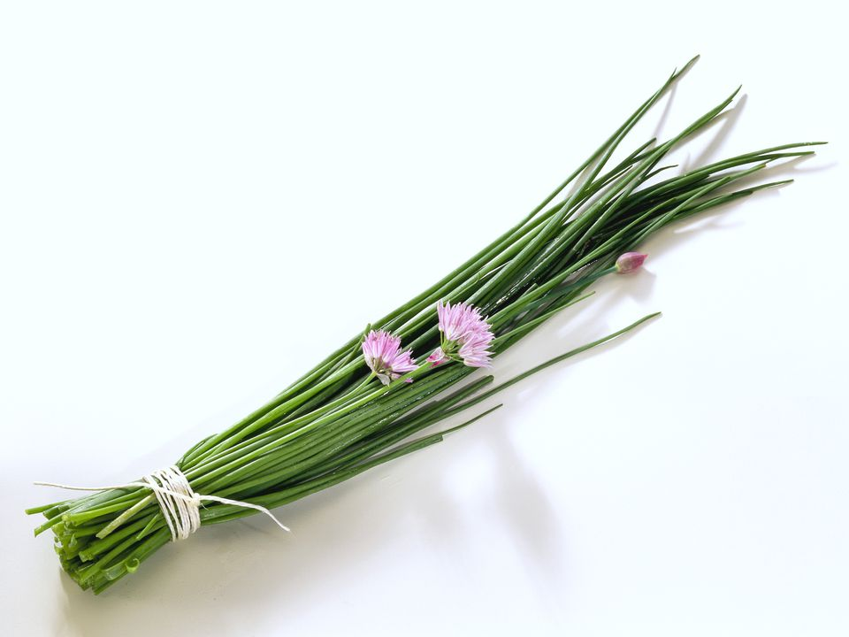 chives, onions, herb, flowers, recipes, receipts