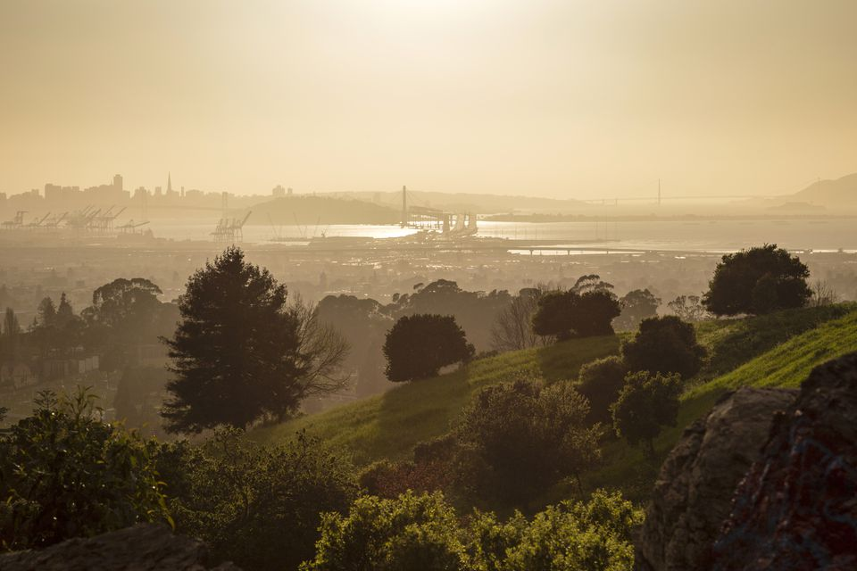 San Francisco Bay Hazy Golden Sunset From Oakland Hills