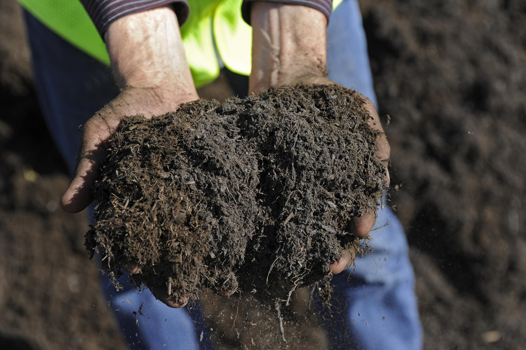 Where to buy top soil and compost in bulk for Garden topsoil