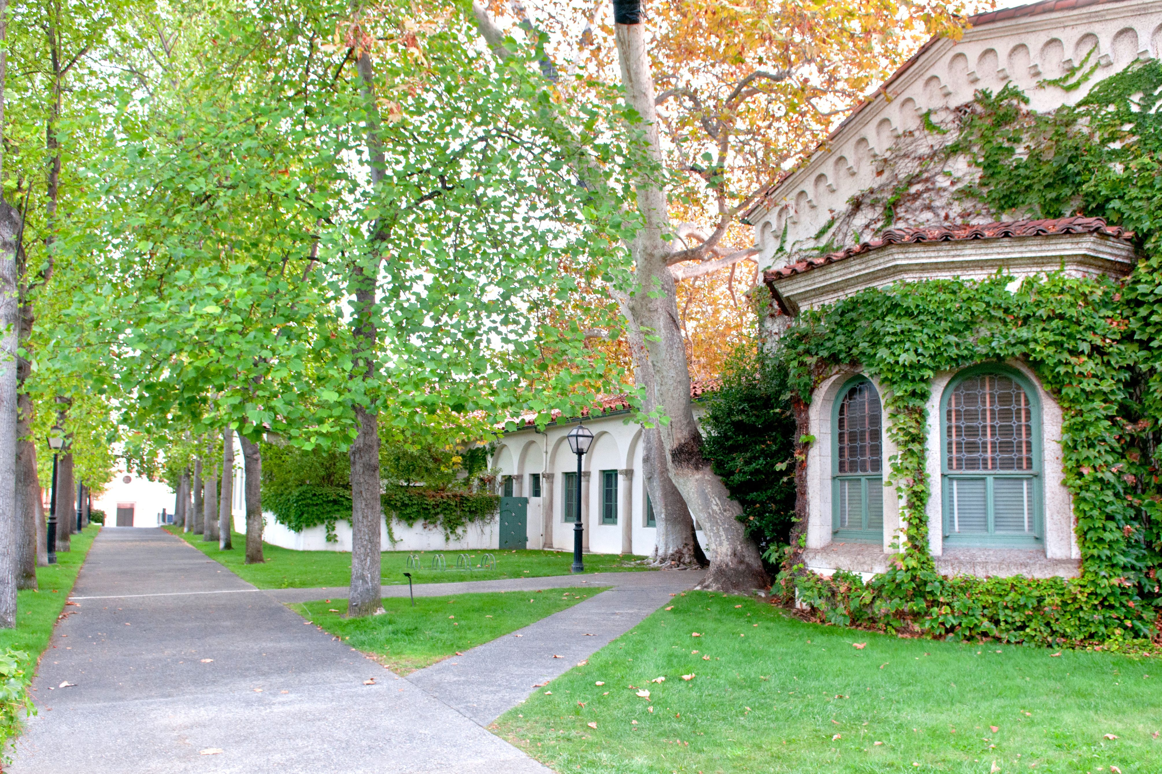 scripps college application essay Find out what you need to know about applying to scripps college, including important dates, application fees, and test requirements.