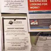 Jobs board in Australia Hostel for Work and Holiday Visa Blog