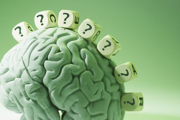 Brain plasticity from learning