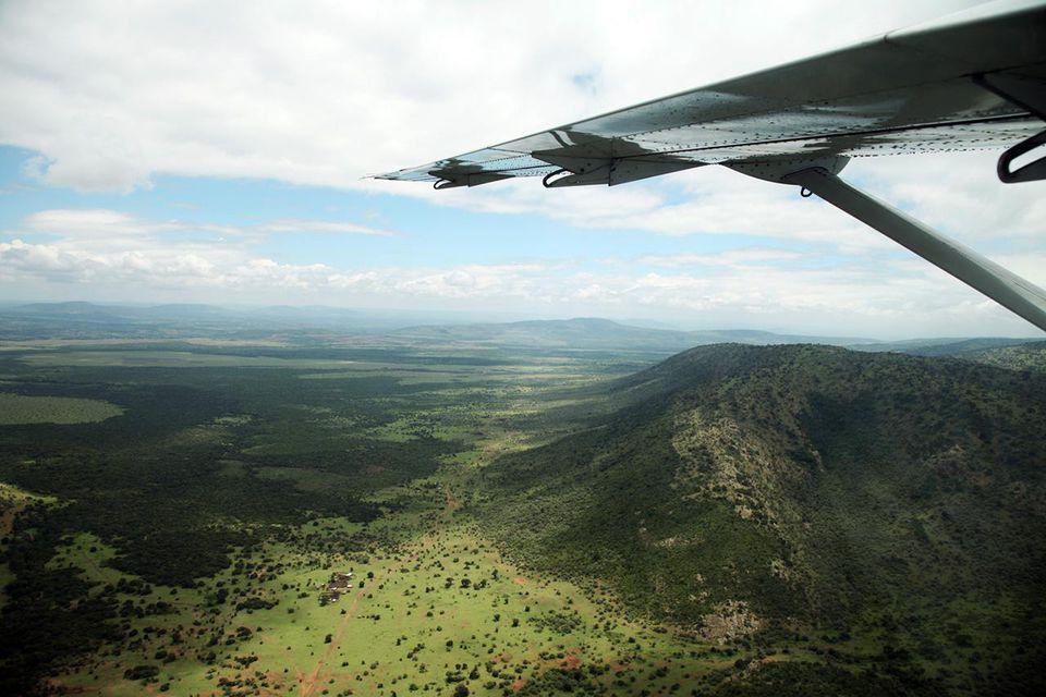 Africa. Kenia. Masai Mara National Reserve.