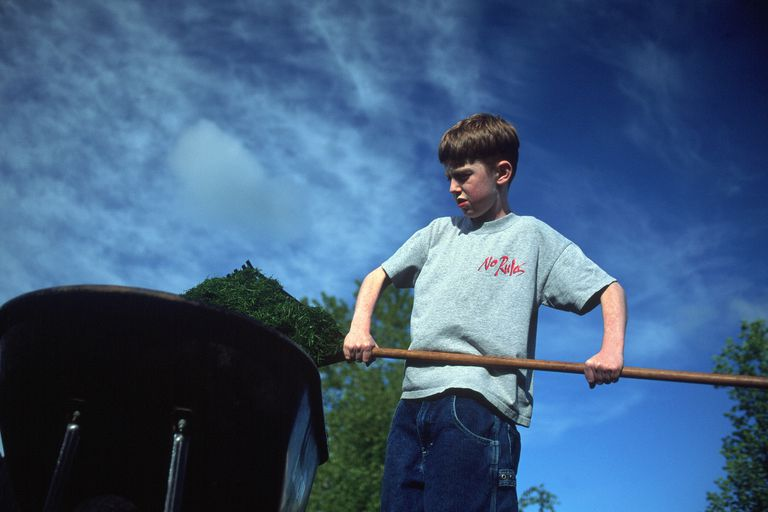 12 year old boy doing yard work