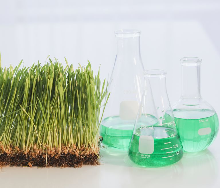 Growing, digesting, and making products from living organisms is organic chemistry.