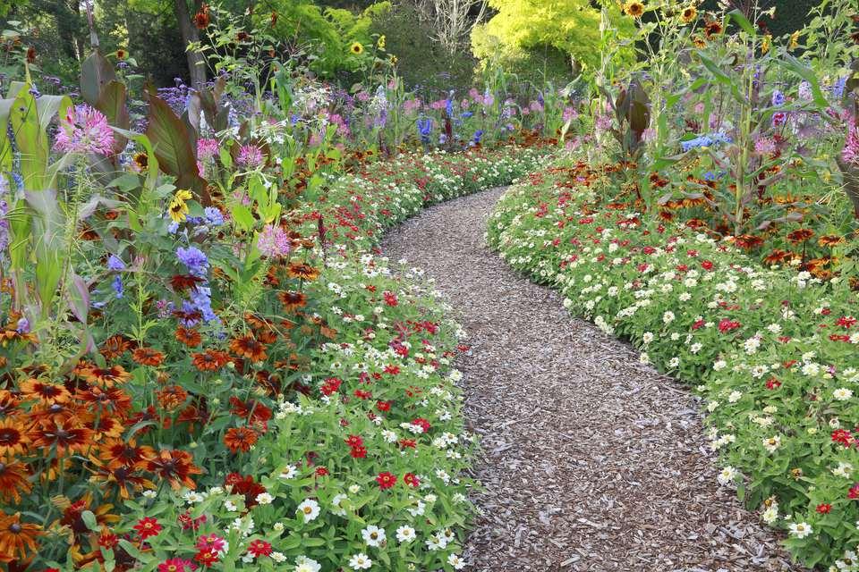 Large flower summer garden