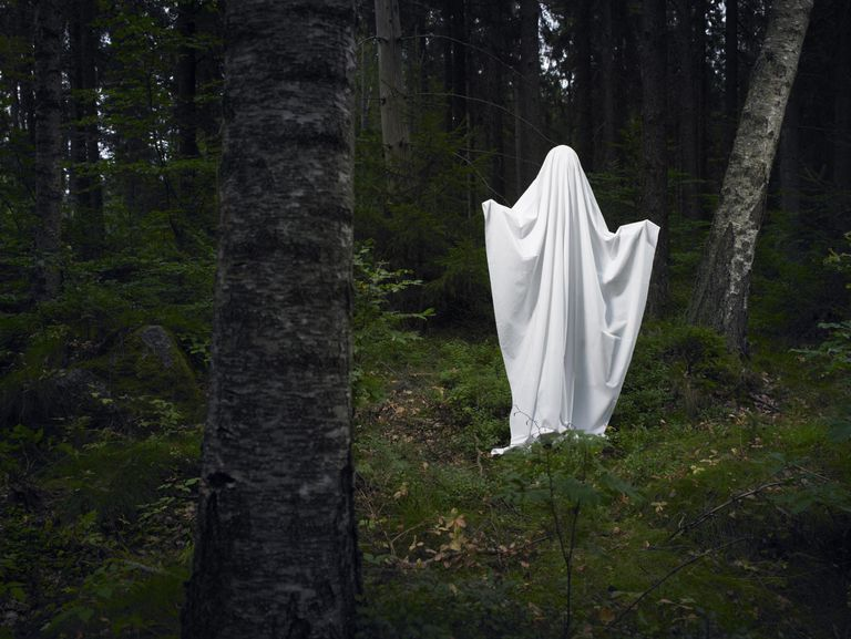 Ghost on a rock, in the woods