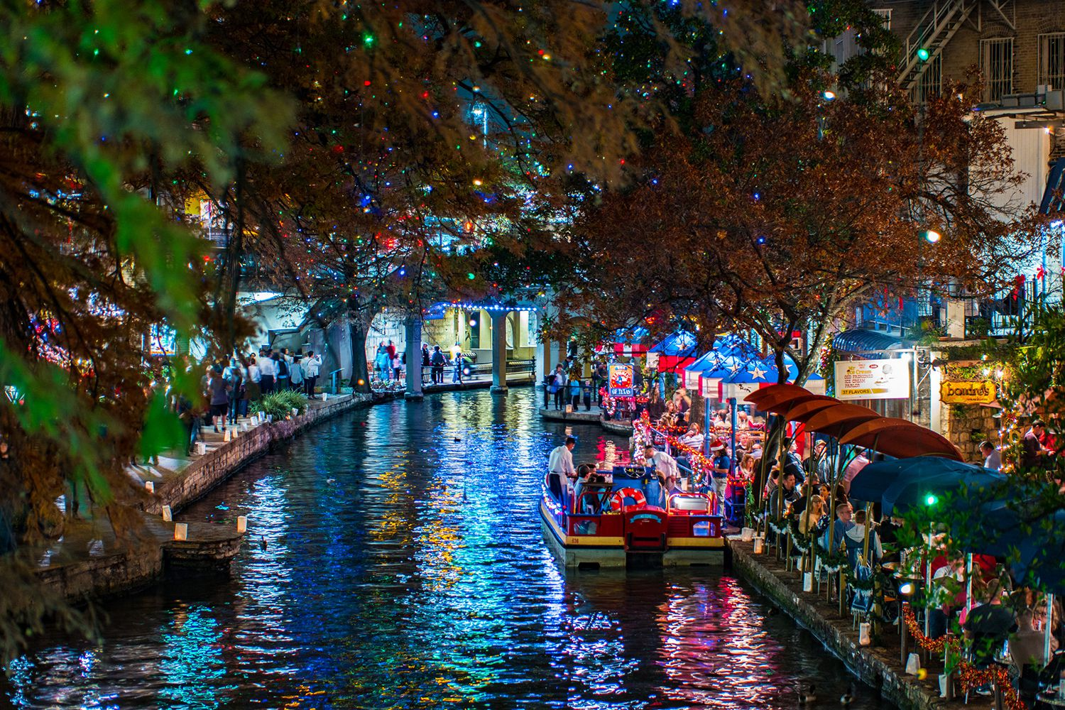 The best christmas lights in san antonio for Best places to visit in us during christmas