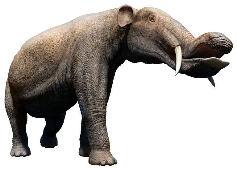 Prehistoric Elephants Everyone Should Know