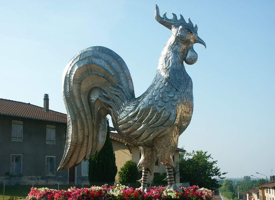 bresse chicken picture