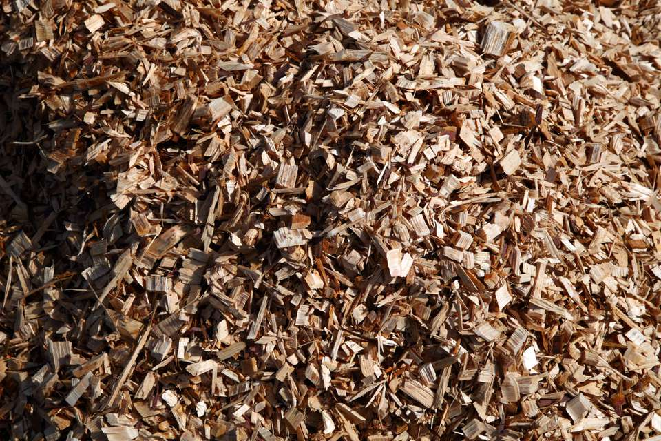 A close-up of wood chips