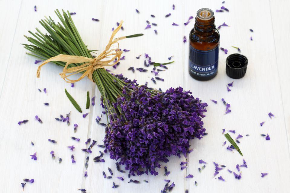 Fragrant lavender and bottle of lavender oil