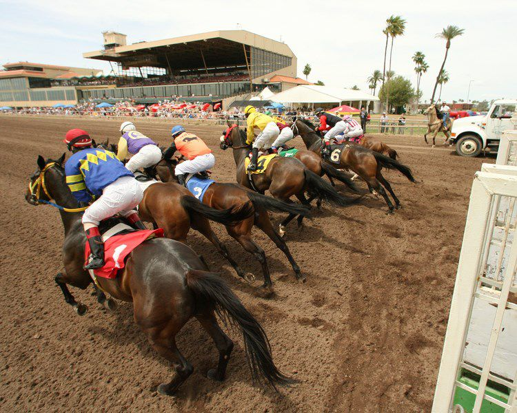 Turf Paradise horse racing track