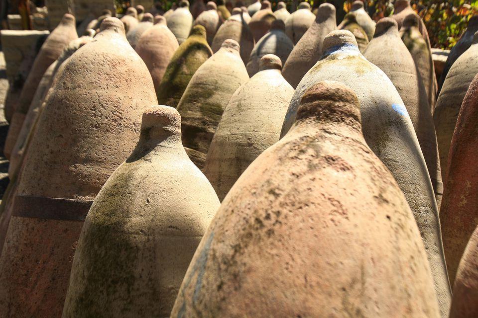Rows of pisqueras
