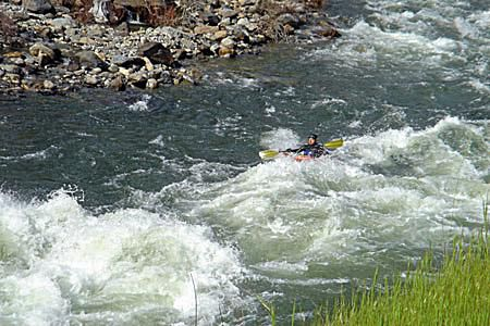 A kayaker enters a Class IV rapid.