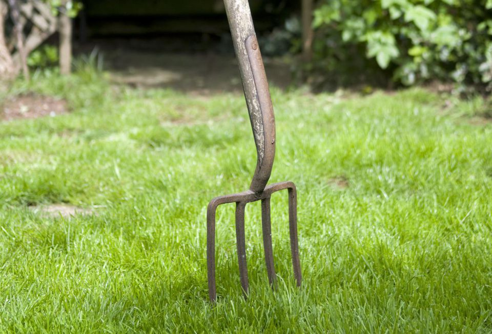 Large garden fork in middle of lawn