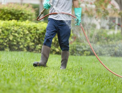 How to Kill Grass Invading a Flower Bed