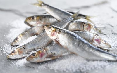 The best types of fish ranked by mercury content for Fish without mercury