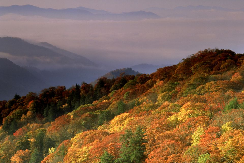 Additional Tennessee Fall Foliage Information