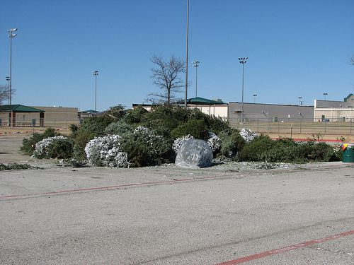 Hurst Christmas Tree Recycling Station