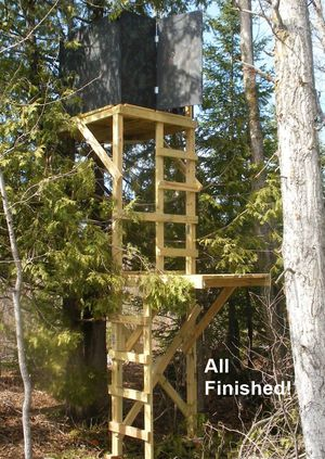 11 free deer stand plans in a variety of sizes for Permanent tree stand