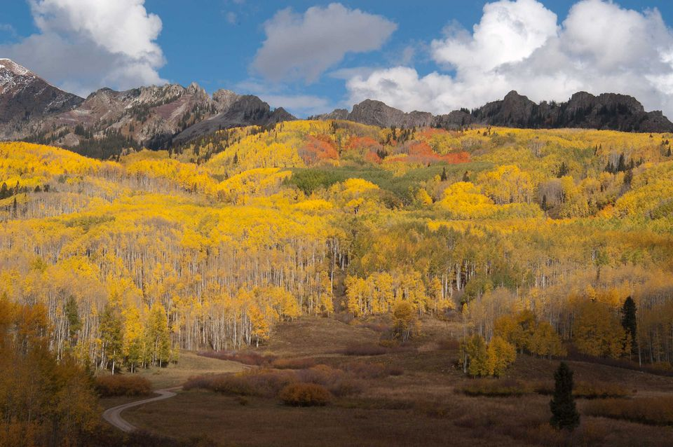 Fall hike near Crested Butte