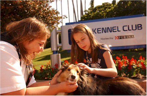 Disney Kennel Club