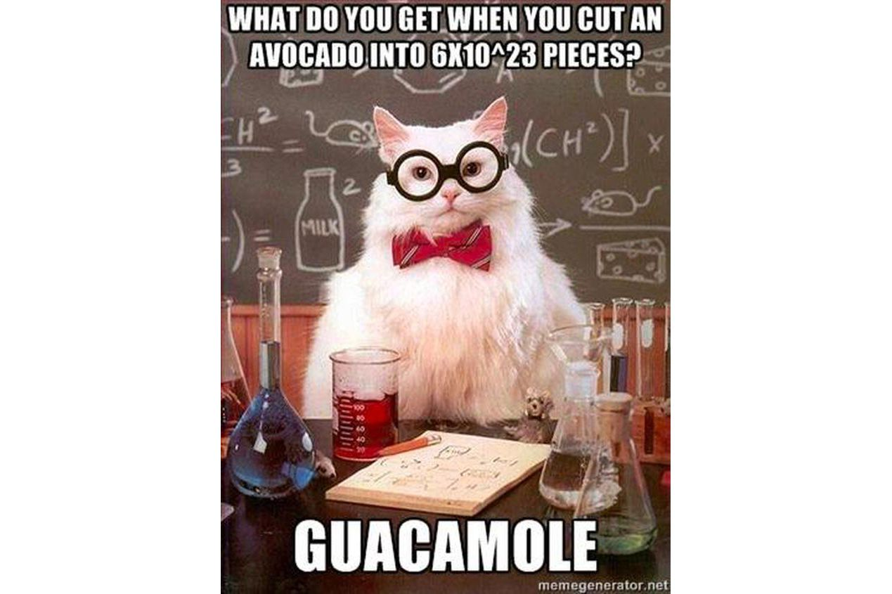 Chemistry Cat knows Mole Day jokes too