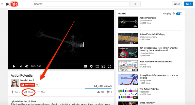 Finding the Share button on YouTube
