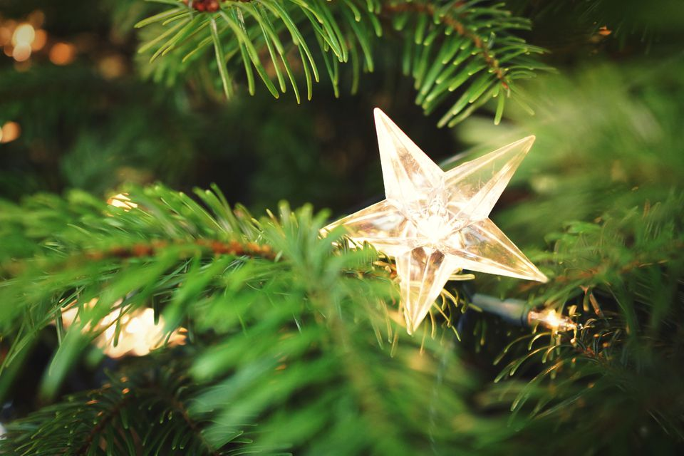 Close-Up Of Star Shape Decoration Of Christmas Tree