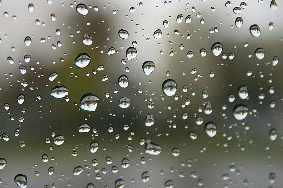 The Best Rainy Day Activities in Toronto