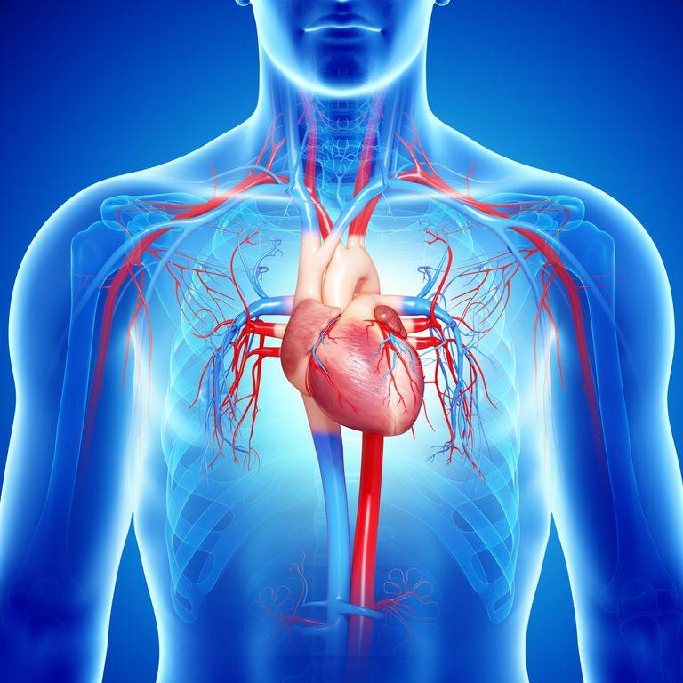 Qué es insuficiencia cardíaca