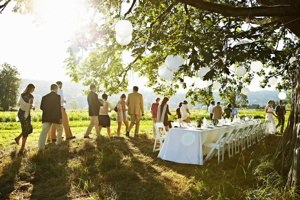 Wedding party walking to table under tree in field