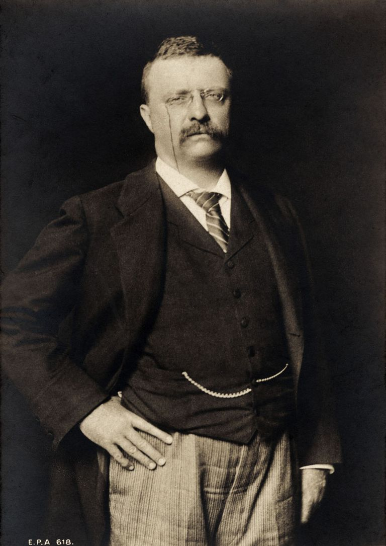 A picture of President Theodore Roosevelt