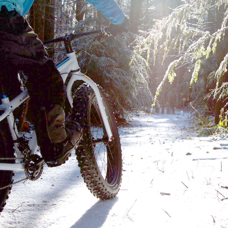 Fat biking in Quebec