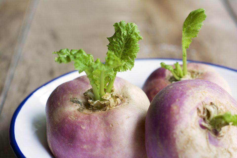 May turnips, Brassica rapa subsp. rapa var. majalis, in an enamel bowl