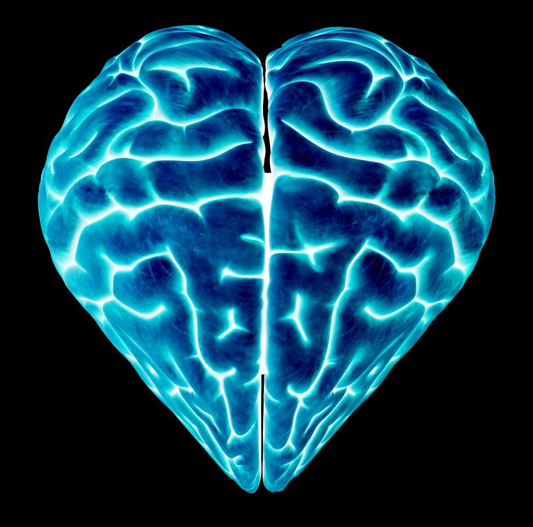 Heart Health is Connected to Brain Health