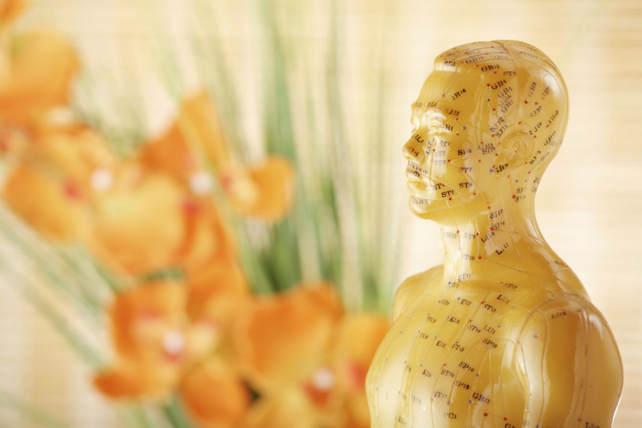 Meridians In Acupuncture And Chinese Medicine