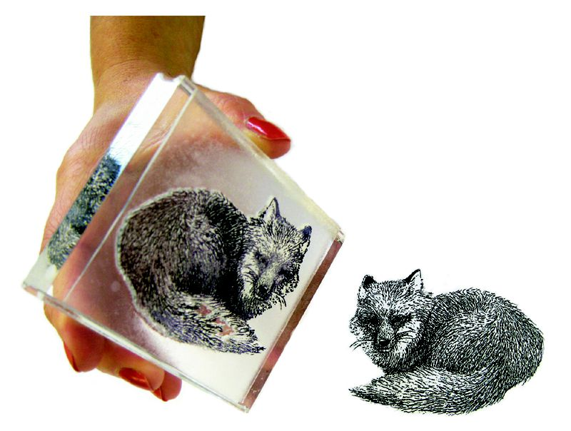 Make Your Own Stamps with Imagepac