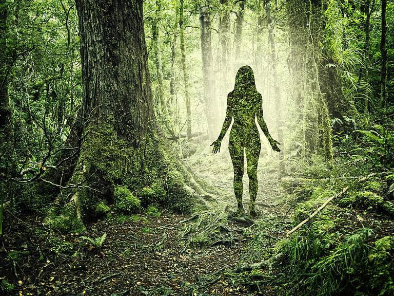 An artist's conception of a spirit, represented by a woman's silhouette in a forest