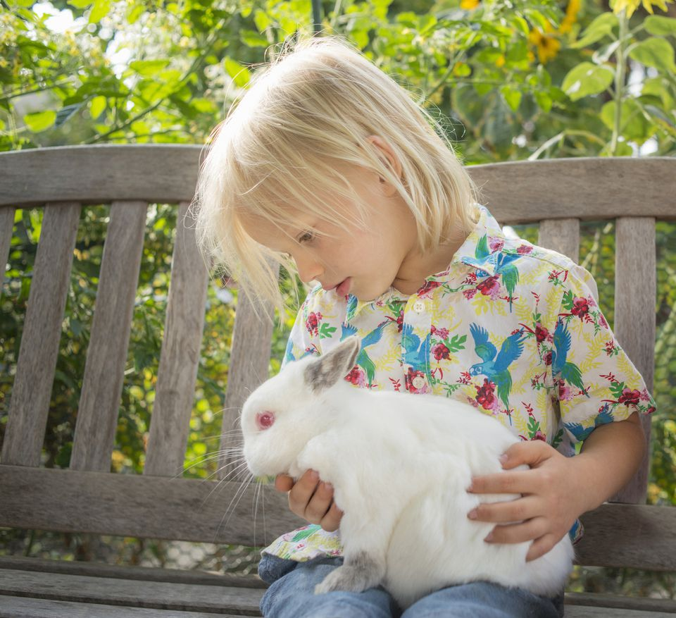 Young boy holding rabbit on her lap