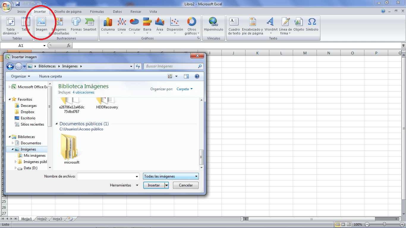 Coloca una imagen en Excel desde tus archivos